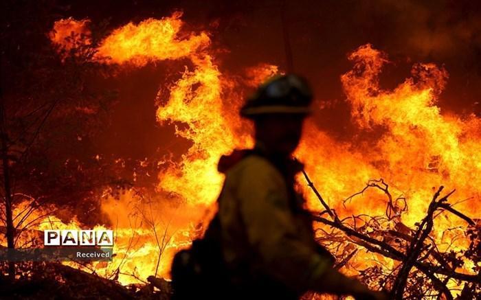 جزییات آتش سوزی یک کارگاه فراوری مواد نفتی و پارافین