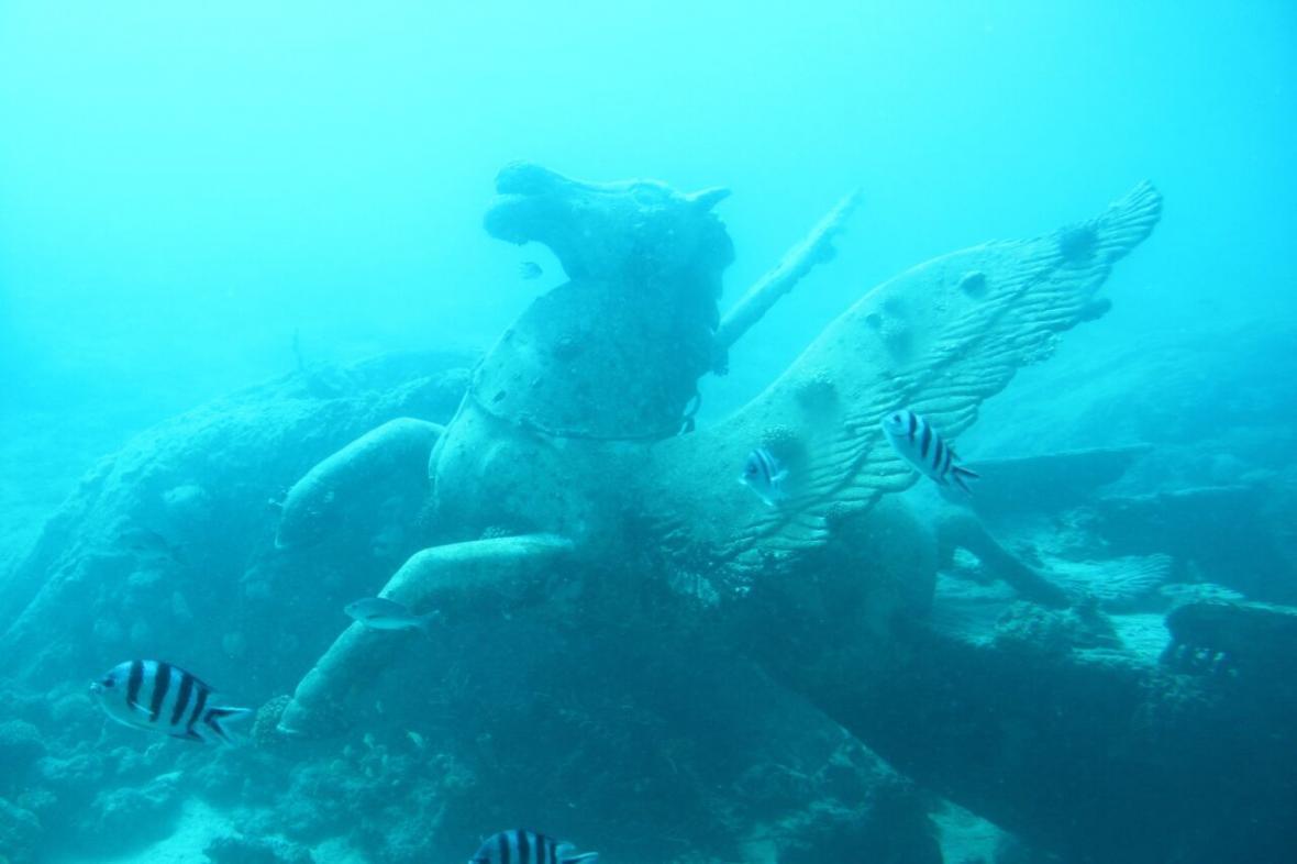 9 شگفتی در دریاهای آرام ولی مرموز