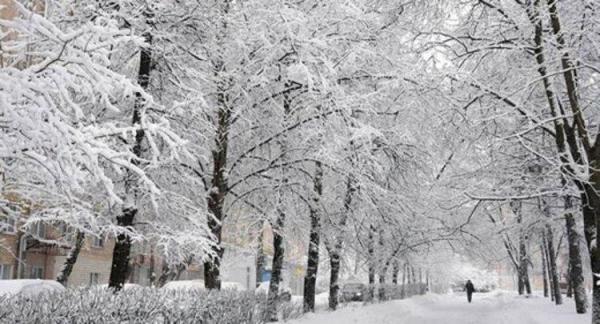 پیش بینی هواشناسی آخر آذر ماه 99؛ دمای 17 استان زیر صفر می رود