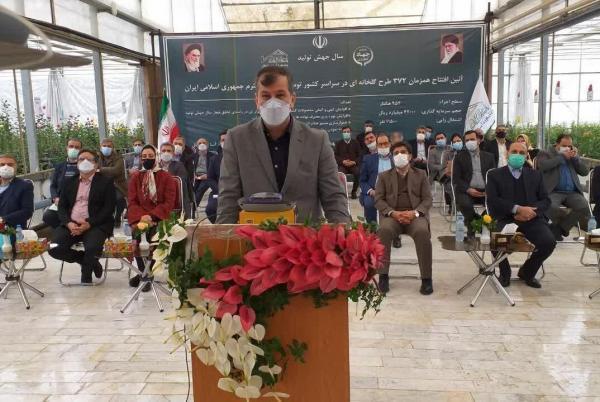 خبرنگاران معاون وزیر: تولید سبزی و صیفی در دولت دوازدهم سه برابر شده است