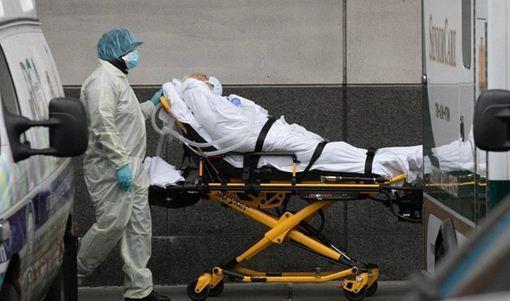 مرگ 1500 کرونایی دیگر در آمریکا طی 24 ساعت خبرنگاران