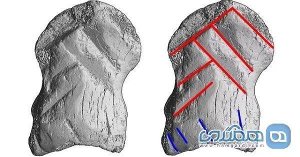 یک اثر هنری مربوط به نئاندرتال ها در یکی از غارهای آلمان کشف شد
